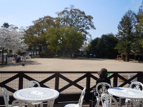 2011_04_14 宝塚ガーデンフィールズDSCN0968
