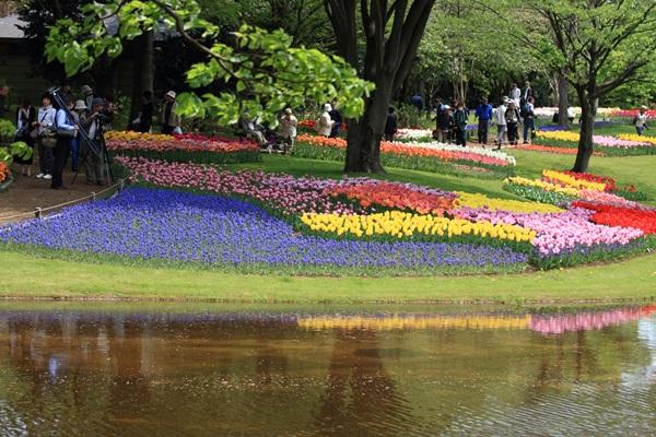 昭和記念公園 ブログサイズ2011_04_25 昭和記念公園 アルバムDPP_0101