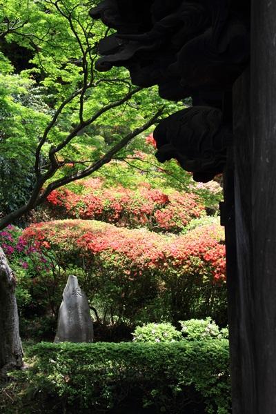 つつじ寺DPP_0044
