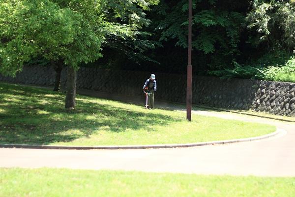 ふるさと公園 新緑2DPP_0016
