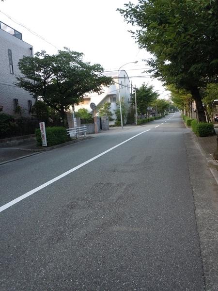 2011_07_19 NISHINOMIYA DSCN1076