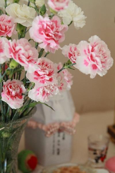 2011_07_25 お花DPP_0011