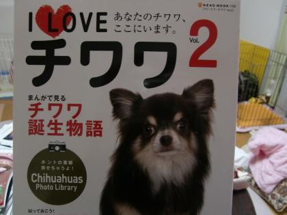I LOVE チワワ Vol.2