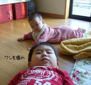 appi-ru.jpg