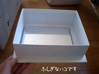 fusiginahako.jpg