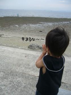 hayamaruna-.jpg