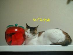 nagomuwaxa.jpg
