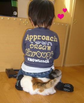 sukisukidessu3.jpg