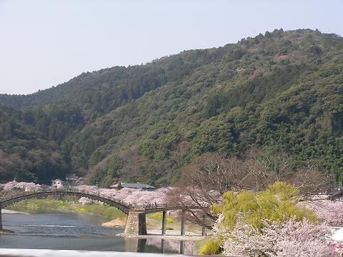 錦帯橋 038