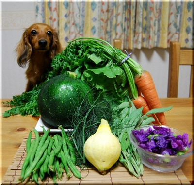 野菜とシェリー