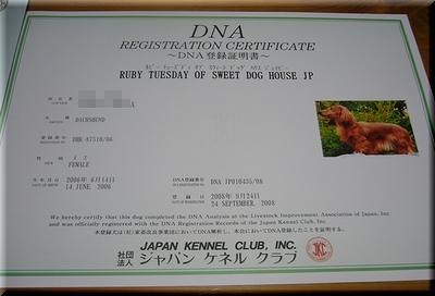 DNA登録