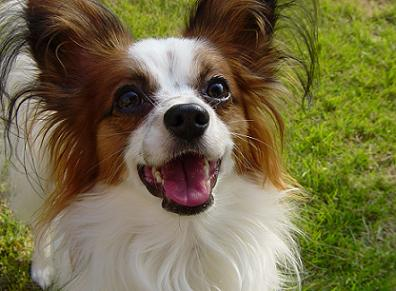 最高の笑顔!