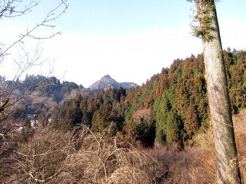 3 杉 鍋割山
