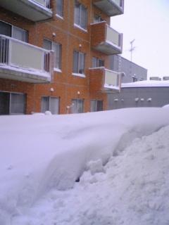 雪害マンション沈没