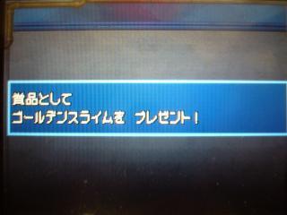 P1040649_convert_20110517004712.jpg