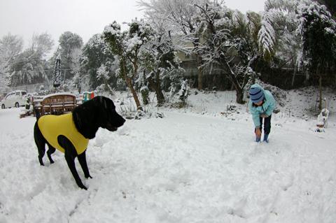 雪の庭でねぇねと②