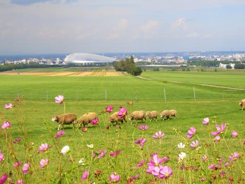 C羊ヶ丘展望台 札幌
