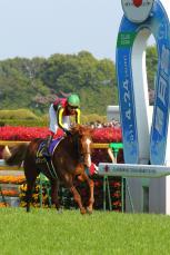 2011皐月賞