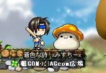 agcomresult_20090208.jpg