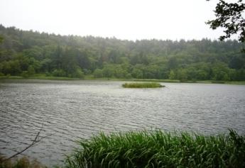 晴れてたら逆さ富士が湖面に映る姫沼♪