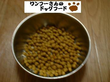 DSCF0010_convert_20081012211643-1.jpg