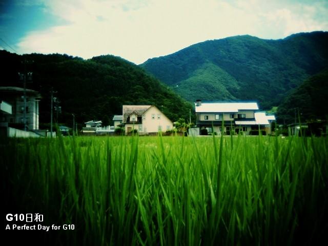 IMG_0054_1.jpg