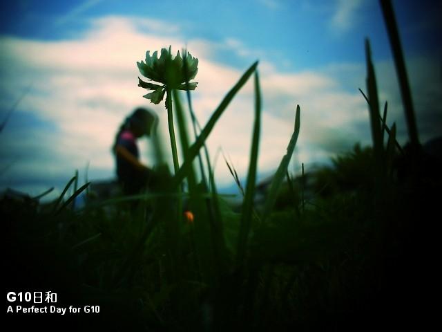 PICT0138_1.jpg