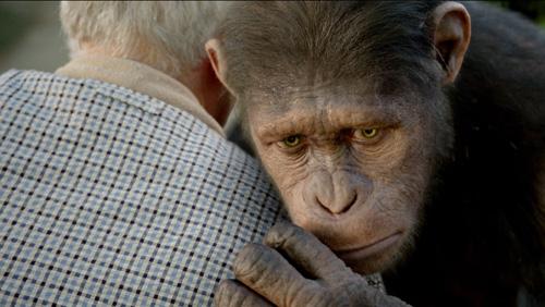 猿の惑星:創世記(ジェネシス)_2