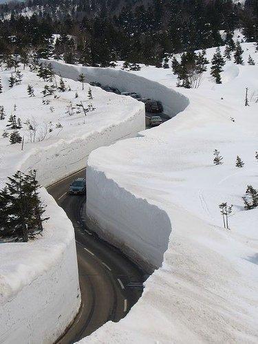 snowvscars19.jpg