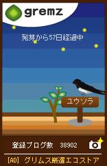 1247058384_07345.jpg