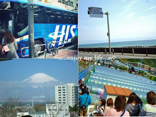bustour2.jpg