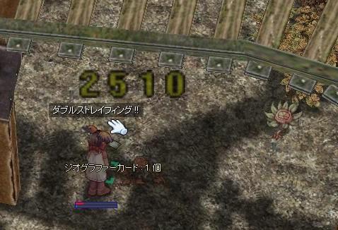 2008-10-27-006.jpg