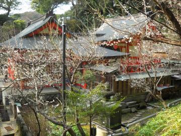 冬の鎌倉3
