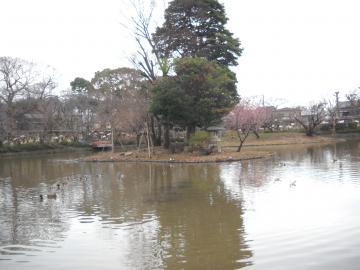 冬の鎌倉12