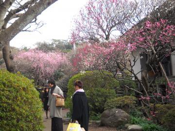 冬の鎌倉8
