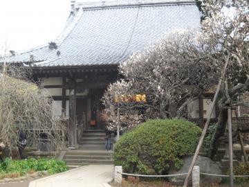 冬の鎌倉10