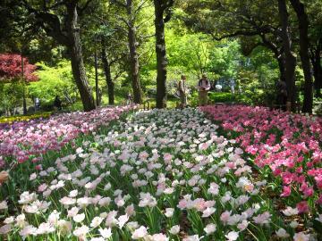 横浜公園5