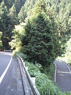 20080808和田裏
