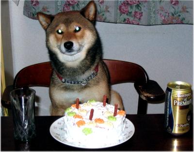 ALEX4歳の誕生日