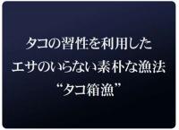 20080509_2.jpg