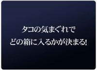 20080509_3.jpg