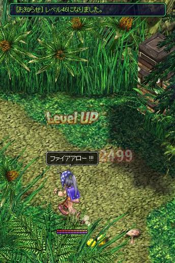 20070303164919.jpg