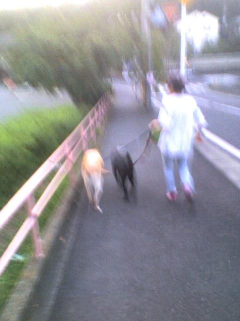 SoraWindy20110814_1815.jpg