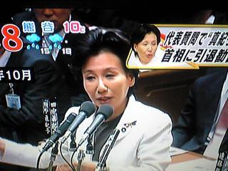 tanakaImage462.jpg