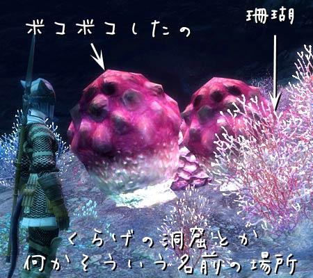 2011_04_21くらげの洞窟