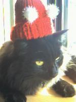 借り物帽子