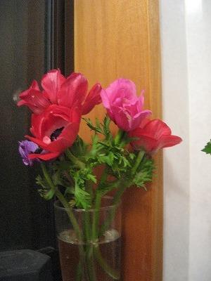 20070420195414.jpg