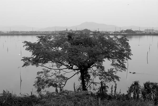 百聞川06