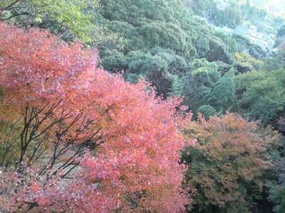 08ogi-kiyomizu-tourou3.jpg