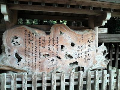 2008-nov-amanoiwato9.jpg